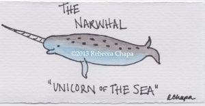 Narwhal Signed_new